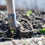 La Fourche bio pour travailler la terre : comment cultiver votre propre nourriture avec cet outil polyvalent